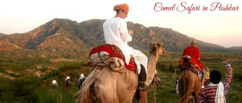 Pushkar sightseeing places