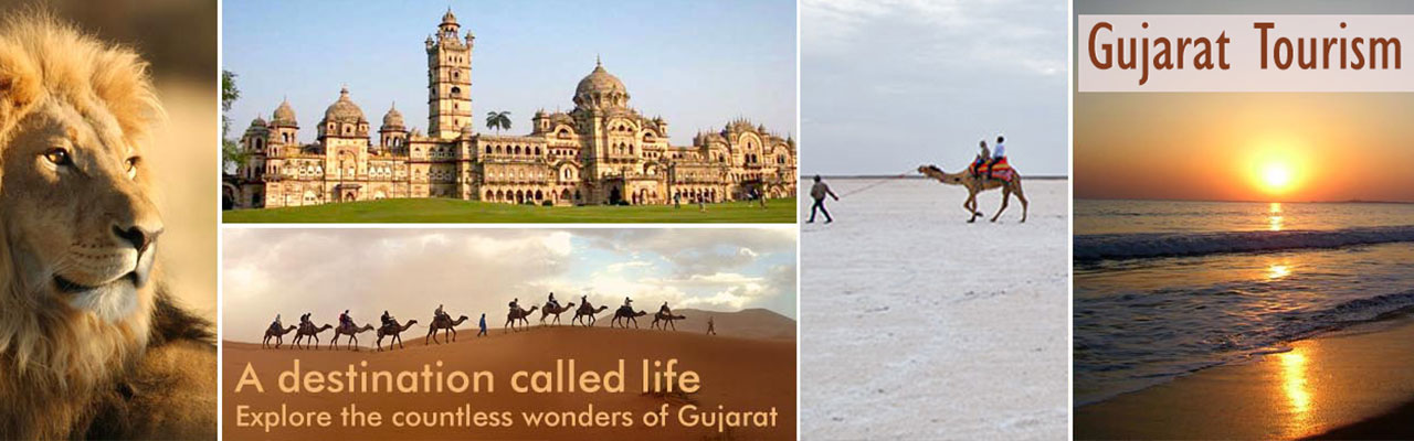 gujarat tourism package