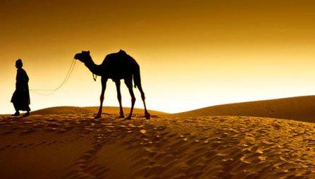 Desert Tour Package